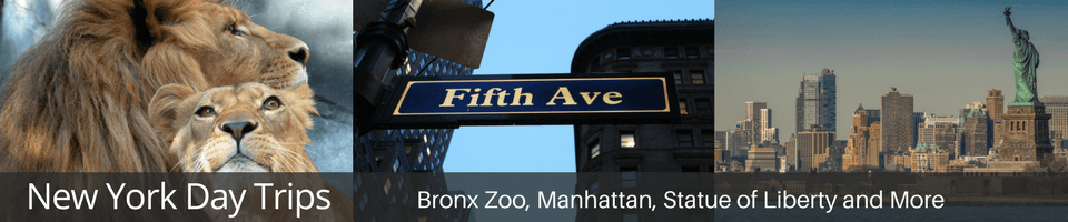 manhattan, bronx aoo, liberty statue, ellis island, fifth avenue, 911 museum